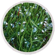 Iceblue Squill Round Beach Towel