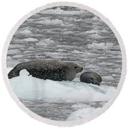 Iced Mother Round Beach Towel