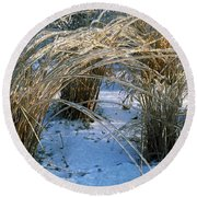 Iced Ornamental Grass Round Beach Towel