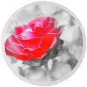 Iced Rose Round Beach Towel