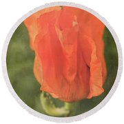 Icelandic Poppy 1124 Round Beach Towel