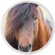 Iclelandic Horse Close Up Round Beach Towel