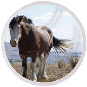Idaho Work Horse 2 Round Beach Towel