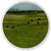 Idyllic Cows In The Hills Round Beach Towel
