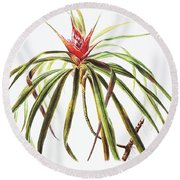 Ieie Plant Art Round Beach Towel
