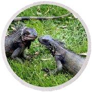 Iguana Kisses St Thomas Round Beach Towel