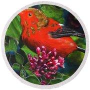 IIwi Scarlet Honeycreeper Bird #339 Round Beach Towel