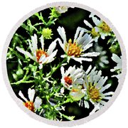 Illinois Wildflowers 3 Round Beach Towel