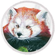 Illlustration Of Red Panda On Branch Drawn With Faber Castell Pi Round Beach Towel