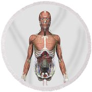 Illustration Of Upper Human Torso Round Beach Towel