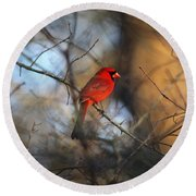 Img_2866-001 -  Northern Cardinal Round Beach Towel