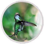 Img_4595-004 - Ruby-throated Hummingbird Round Beach Towel