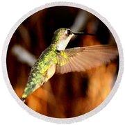 Img_4625 - Ruby-throated Hummingbird Round Beach Towel