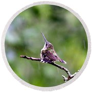 Img_5271-001 - Ruby-throated Hummingbird Round Beach Towel