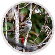 Img_6624-002 - White-throated Sparrow Round Beach Towel