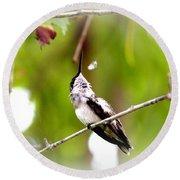 Img_7436-020 - Ruby-throated Hummingbird Round Beach Towel