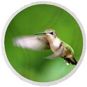 Img_7512 - Ruby-throated Hummingbird Round Beach Towel
