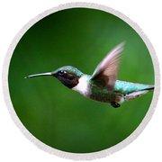 Img_7668-003 - Ruby-throated Hummingbird Round Beach Towel