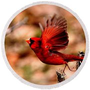 Img_8892 - Northern Cardinal Round Beach Towel