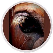 Img_9984 - Horse Round Beach Towel