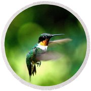 Img_9985-001 - Ruby-throated Hummingbird Round Beach Towel