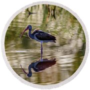 Immature White Ibis At Sunrise Round Beach Towel