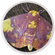 Imperial Moth Round Beach Towel