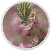 Impression With A Small Butterfly Round Beach Towel