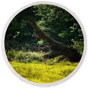 In A Field Of Gold Round Beach Towel