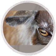 In A Goat's Eye Round Beach Towel
