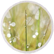 In A Meadow Round Beach Towel