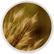 In An Autumn Field - Golden Macro Round Beach Towel