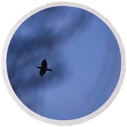 In Flight At Dusk Round Beach Towel