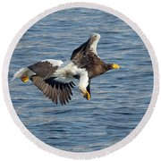In Line Flying Round Beach Towel