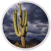 In Search Of That Perfect Saguaro  Round Beach Towel