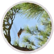 In The Big Tree Round Beach Towel