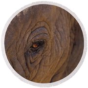 In The Eye Of The Elephant Round Beach Towel