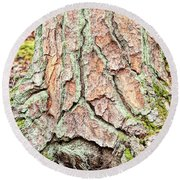 In The Forest Art Series - Tree Bark Patterns 1  Round Beach Towel