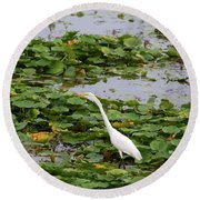 In The Lily Pads Round Beach Towel