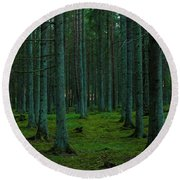 In The Middle Of The Forest Round Beach Towel