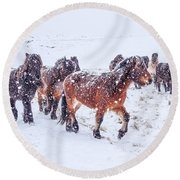In The Storm 2 Round Beach Towel