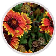 In The Summer Garden Round Beach Towel