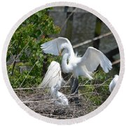 In The Wild White Snowy Egrets Photography ....photo A Round Beach Towel