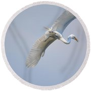 Now Where Did I Leave That Nest...in The Wild White Snowy Egrets Photography....photo C Round Beach Towel