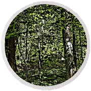 In The Woods Wc Round Beach Towel