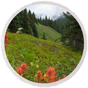 Indian Paintbrush Window Into The San Juans Round Beach Towel