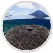 Indonesia, Coral Reef Round Beach Towel