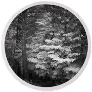 Infared Photograph Round Beach Towel