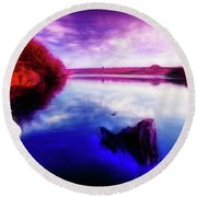 Inquisitive Swan Round Beach Towel