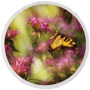 Insect - Butterfly - Golden Age  Round Beach Towel